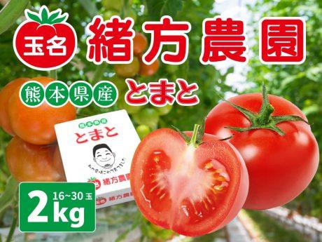 【熊本県産】玉名の隆唐トマト 2kg|緒方農園