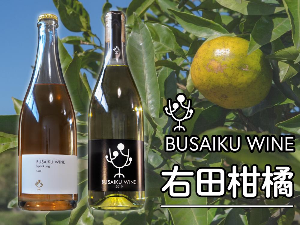 みかんワインギフトセット【2020冬】|右田柑橘