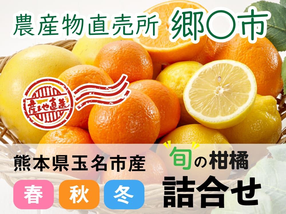 柑橘類詰合せ 郷◯市