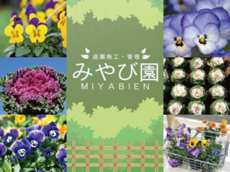 季節の花苗|みやび園